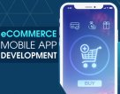 How to Build a Powerful eCommerce Application?